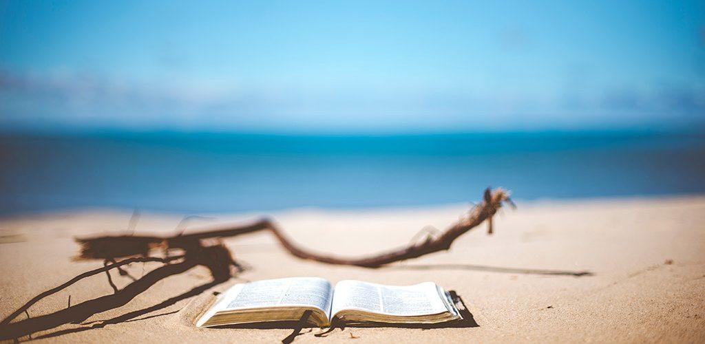 hay_que_leer_mas_libros